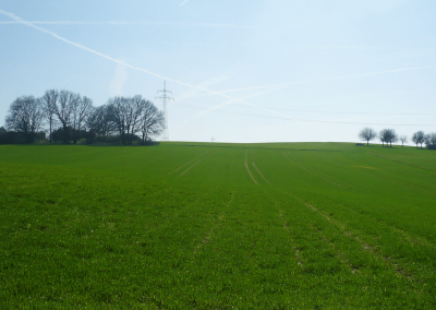 Grüne Wiesen in Pohlheim